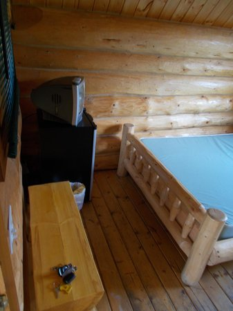 KOA Hinton/Jasper : view from inside the door of our cabin. Nice comfy bed and a tv to boot!