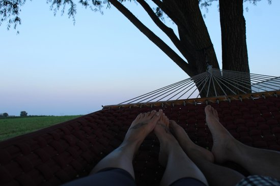 Scottish Bed & Breakfast: The 2 person hammock is GREAT!