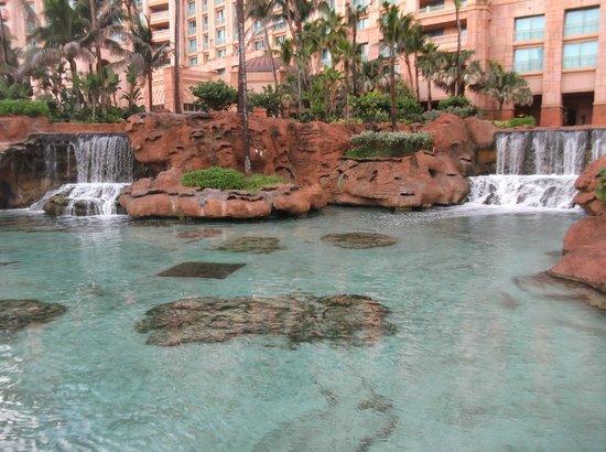 Atlantis, Beach Tower, Autograph Collection: Super landscape