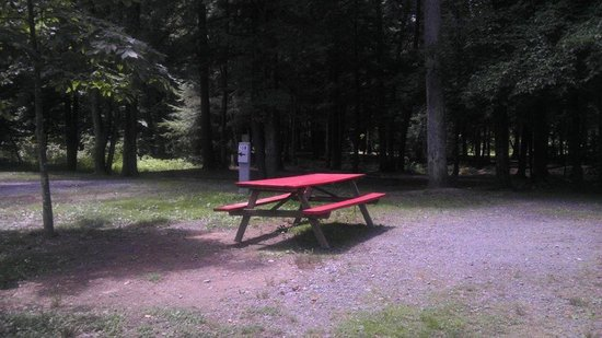 Lake Glory Campground: site