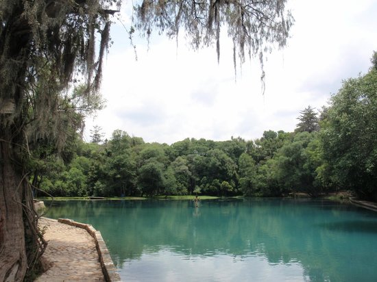 Bosque de las Truchas: Trout Lake