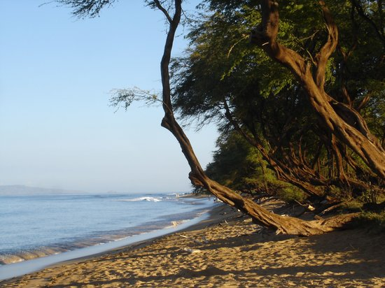 Ka'anapali Beach: Morning walk
