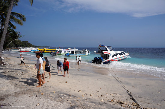 Friends of the National Parks Foundation Wildlife & Conservation Centre: Arriving by ferry on Nusa Penida island