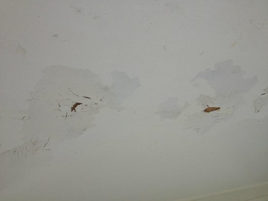 Sandy Point Beach Resort: nasty ceiling