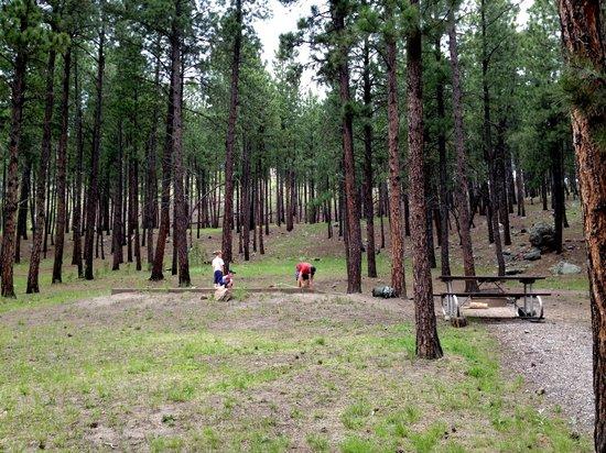 Center Lake Campground Reviews Amp Photos Custer Sd Tripadvisor