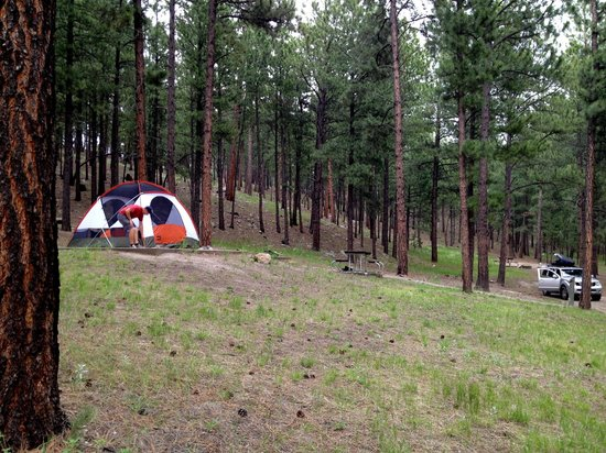 Tent is up at our site in the Upper Loop at Center Lake Campground