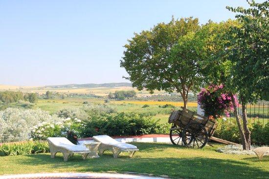 Hacienda El Santiscal: Vistas desde la piscina