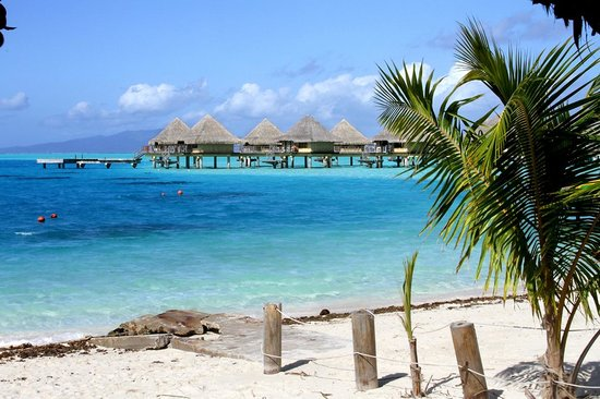 هوتل ميتاي بولينيزيا: Фото сделано неподалеку на пляже