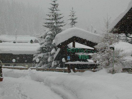 Alpen Hotel Vidi: tanta neve!!!