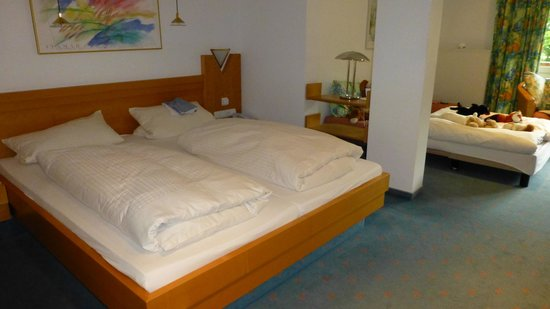 Hotel Wiedemann: La camera