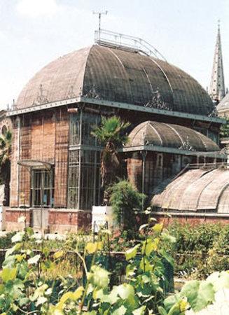 Serres du Jardin Des Plantes à proximité - Photo de Hotel de la Gare ...