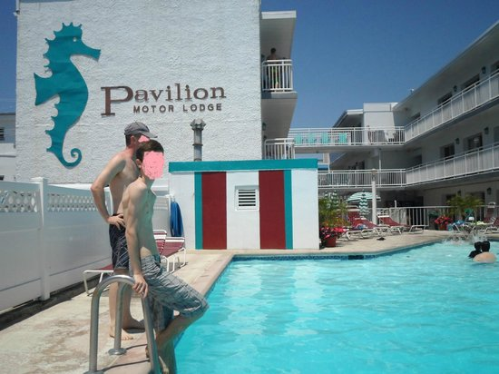 Pavilion Motor Lodge: swimming-pool