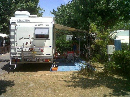 Parco Vacanze Piccolo Paradiso: piazzola