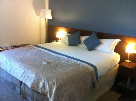Hotel Les Pleiades : Chambre Standard