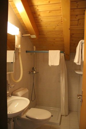Hotel Daniela: 清潔なバスルーム