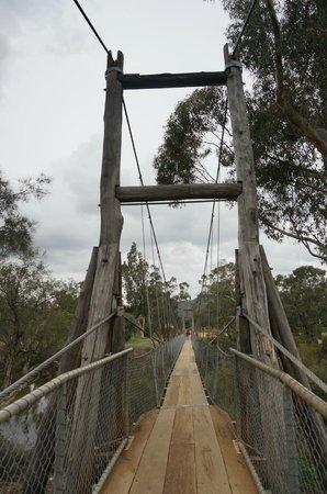 Avon River Suspension Bridge: the bridge
