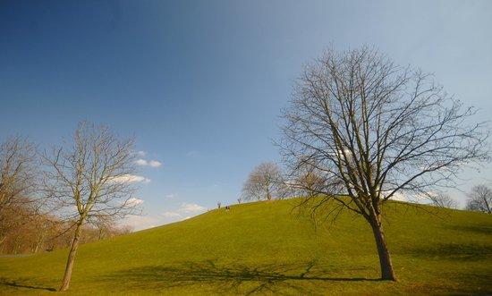 Freizeitpark Rheinaue : Lovely day in the park