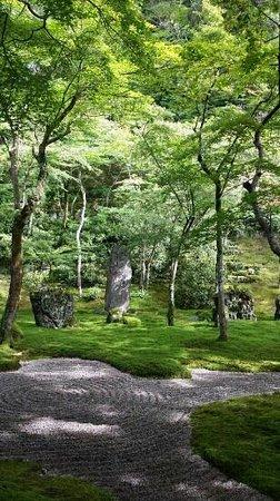 Komyozen-ji Temple: 表のお庭で、こんなものかな。。。と、思ったら駄目です!