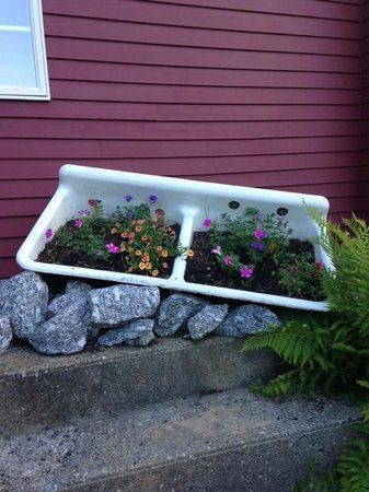 Sink outside One Mile West with flowers