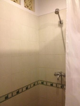 The Radiant Hotel and Spa & Airy : Shower