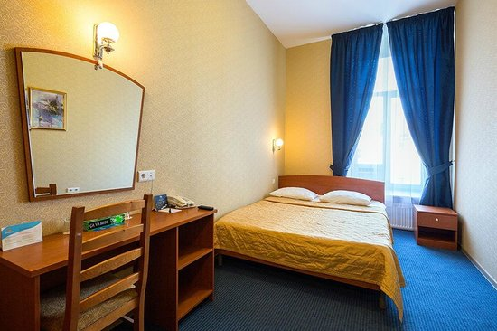 Nevskiy Central Hotel: Standard Double Room