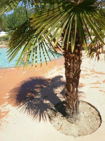 Lagrange Confort+ Residence le Domaine de l'Oliveraie: piscine de Nyons