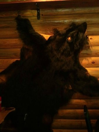 Baylee Jos BBQ: A bear skin hanging on the wall of the dining area.