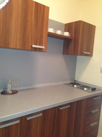 Hotel Plejsy: 2 electric stoves for cooking,electric kettle is also there!