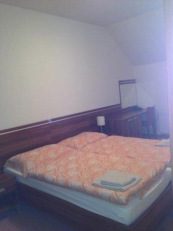 Hotel Plejsy: 2 beds.