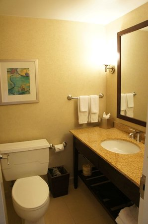 DoubleTree by Hilton Chicago North Shore: The washroom was smaller than expected. Door was always in the way.