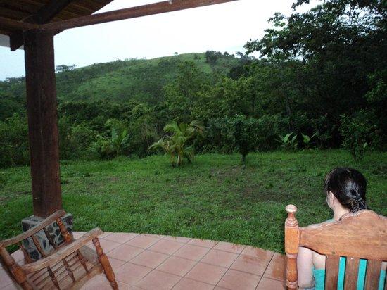 Rinconcito Lodge: Vue du patio arrière