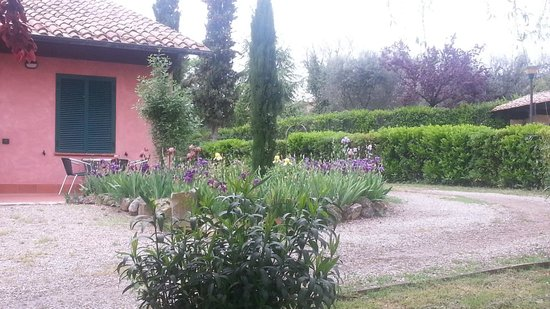 Casanova Wellness Center - Hotel Residence SPA & Beauty Farm: giardino
