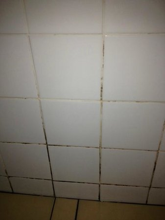 The Richmoor Hotel: More mould, or brown grouting if you're the owner of Richmoor