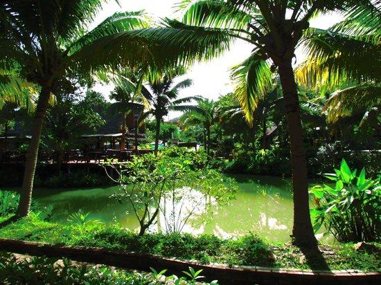 กรีนวิว วิลเลจ รีสอร์ท: View from bungalow