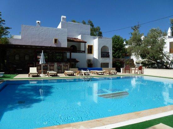 Toloman Hotel: pool