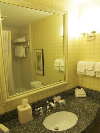 Hilton Garden Inn Bangor: Our room's bathroom