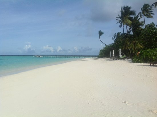 Vakarufalhi Island Resort : un lembo di spiaggia