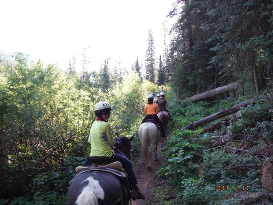 Circle K Guest Ranch: Horseback ride
