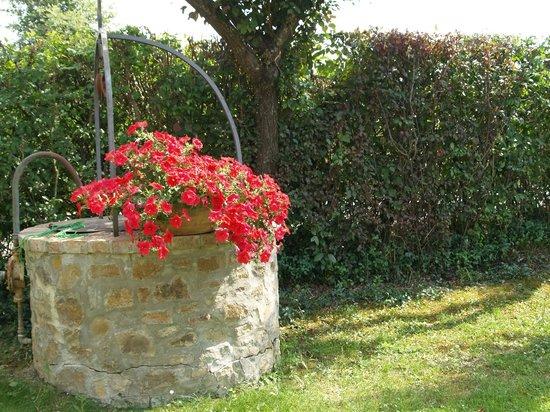 Farmhouse Il Fienile: Garden