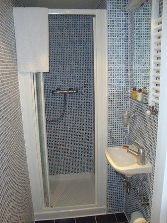Studios2Let - North Gower: Baño, la ducha
