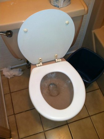 Dutch Motel : toilet that ran all night and wouldnt flush