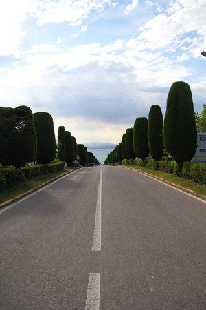 Camping Lido: main road