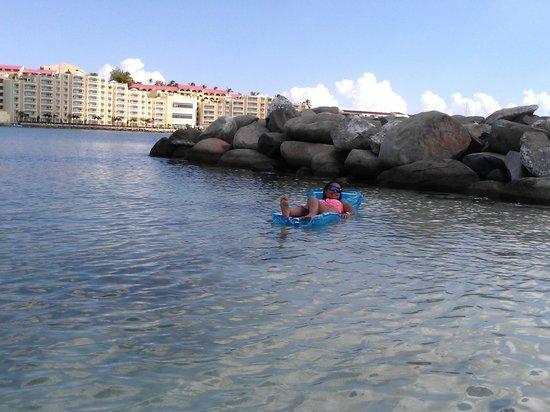 Royal Palm Beach Resort: area snorkling....