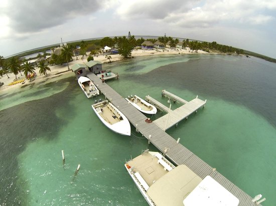 Blackbird Caye Resort: Jason Lee photography
