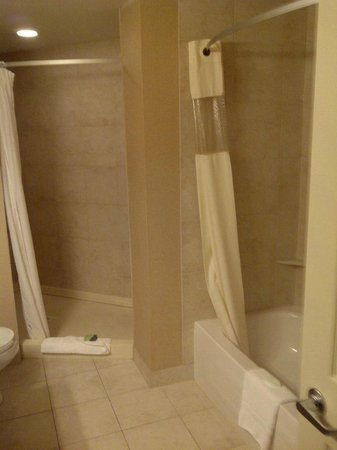Deerfoot Inn and Casino : Walk-in shower plus tub/shower