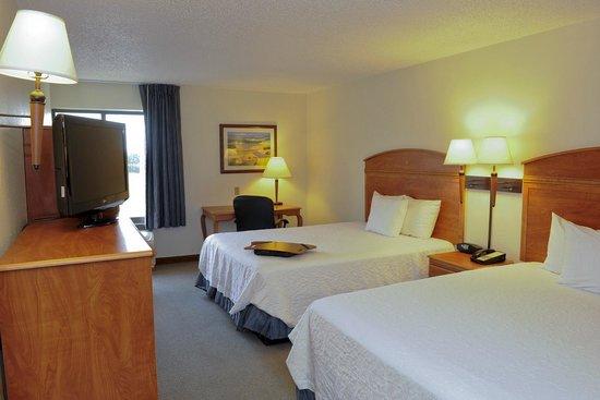 Hampton Inn Chicago/Elgin: 2 Doubles Guest Room