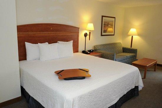 Hampton Inn Chicago/Elgin: King Guest Room