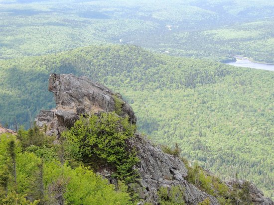 Bed and Breakfast Du Repos: Mont Carleton