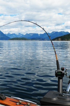 Pristine Charters: Fishing for Salmon