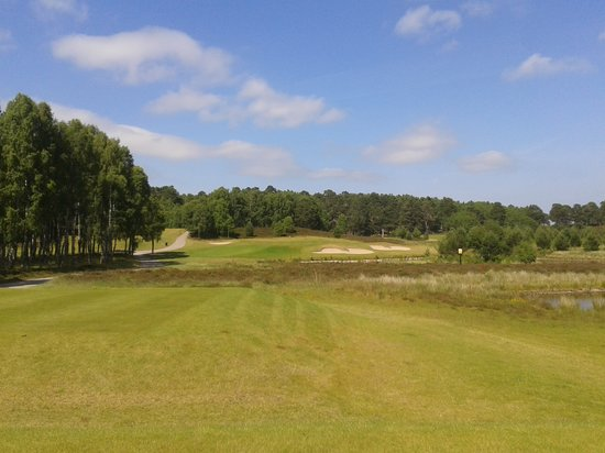 Silverglades Holiday Homes: 16th at Spey Valley GC , play over the loch on this hole.